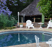 longtom farm guesthouse swimming pool